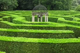 School to Install Hedge Maze